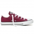 Chuck Taylor All Star Seasonal-CO